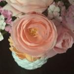 Nahema Rose